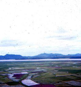 NK View 2