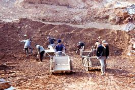 Korean Excavators