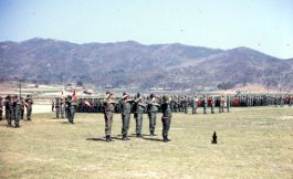Camp Stanley 10